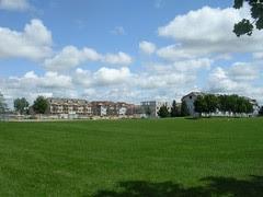 The park on Sunday