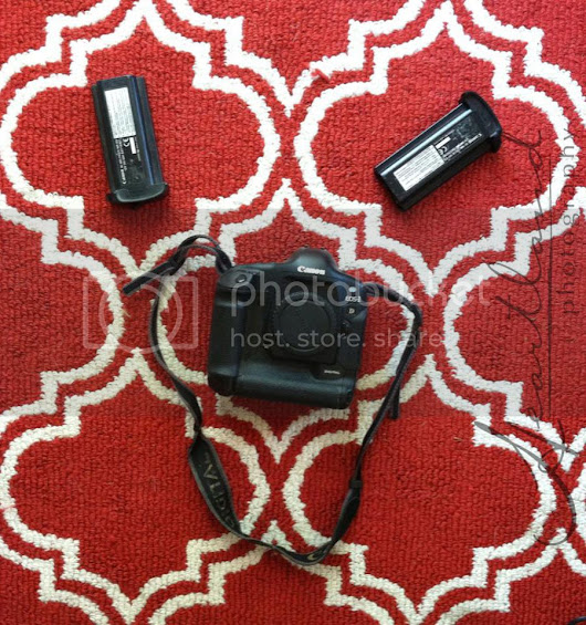 {Personal} What to do with old digital camera(s)?