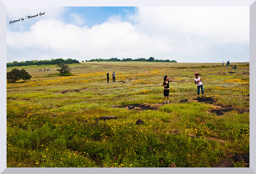 Kaas Plateau - Visitors enjoying the sight of bed of flowers