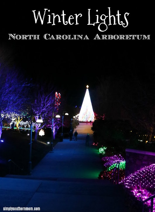 Winter Lights at the North Carolina Arboretum, Asheville, NC