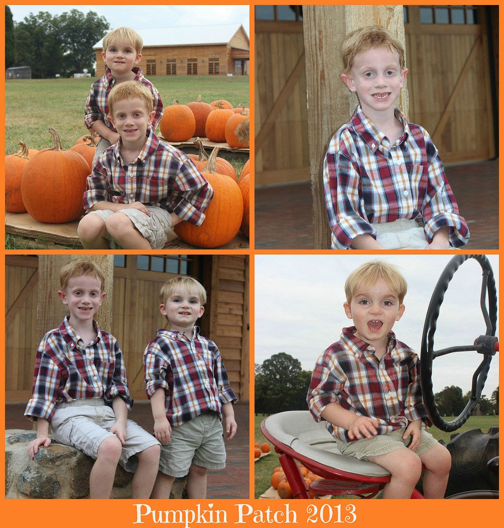 photo Pumpkincollage_zps02e5aaf0.jpg