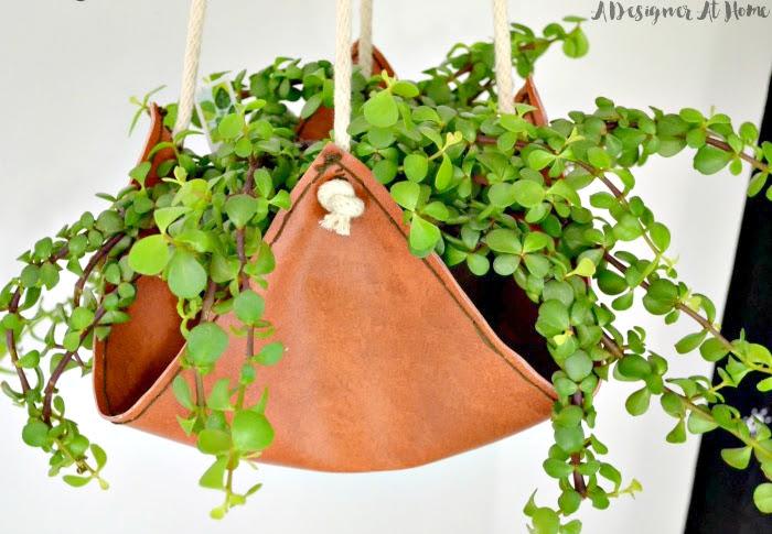 elephant-bush-plant-in-handmade-leather-hanging-planter