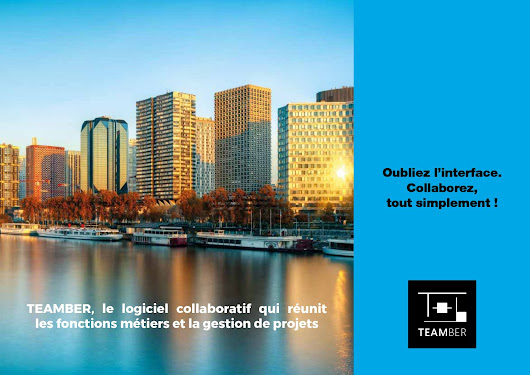 Brochure Commerciale TEAMBER 2017