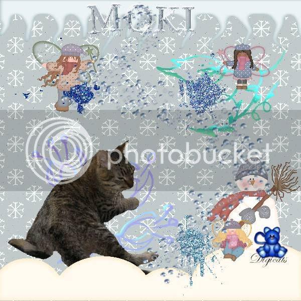Fairies,Domestic Cat,Tabby Cat,Winter,Snowmen,Fantasy