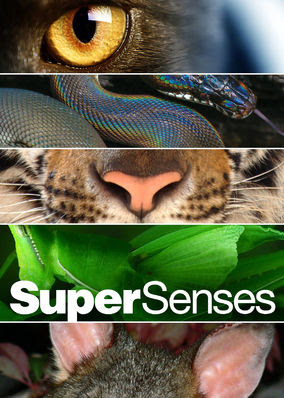 Super Senses - Season 1