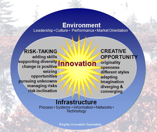 Risk readiness and innovation growth - board room tension