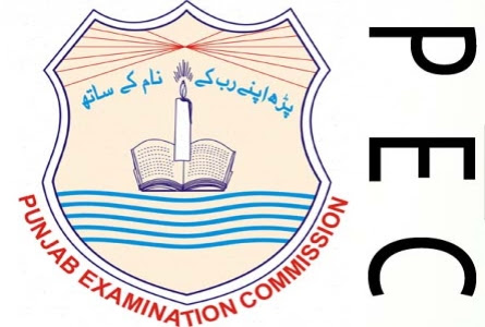 PEC 5th Class Result 2015 All Punjab Districts