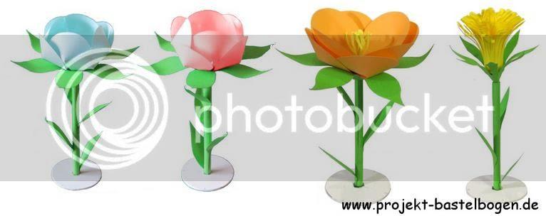 photo flowersborisnews00002_zpsc7cd5cd5.jpg