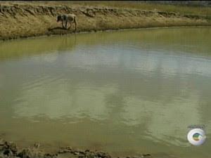 Barragens no Sertão de PE estão em colapso (Foto: Reprodução/TV Grande Rio)