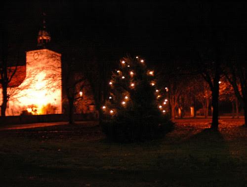 x-mas light :: julelys på treet