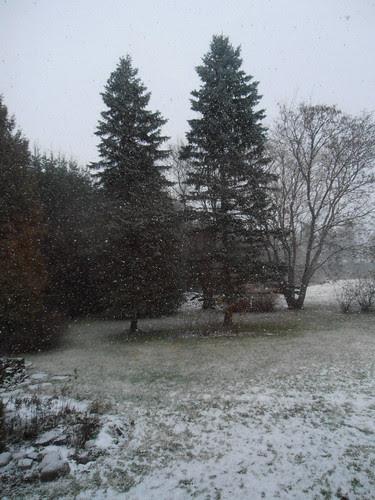 talvi 2013 018