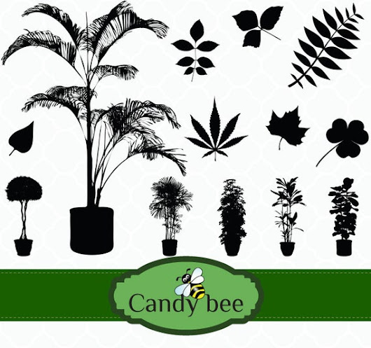 Plant & Leaves Silhouette digital Clip art  Buy by CandyBeeDesigns