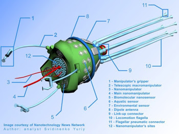 Svidinenko Yuriy, Diamondoid cell-repair nanorobot