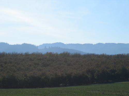 Fall Haze on the hills