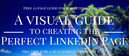 Download A Visual Guide to Creating the Perfect LinkedIn Page Ebook