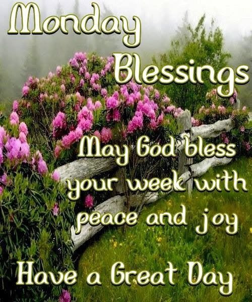 The 100 Best Good Morning Monday Blessings Images Soaknowledge