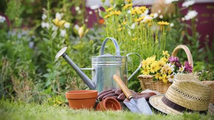 How to spruce up your garden to help sell your home - BT