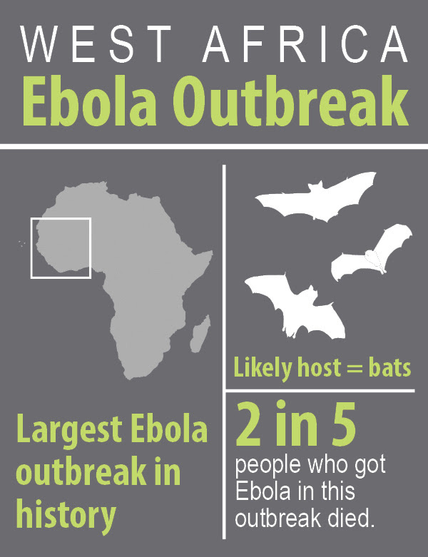 West Africa Outbreak infographic