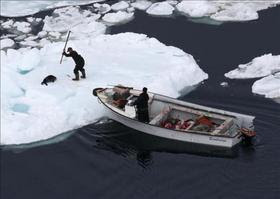 La caza de focas deja de ser rentable