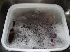 Third Woolite Bath