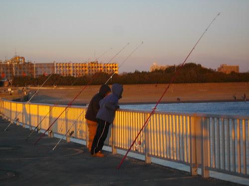 千葉、花見川河口近くの防波堤釣り