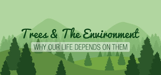 Trees & The Environment: Why Our Life Depends On Them [Infographic] – Greener Ideal