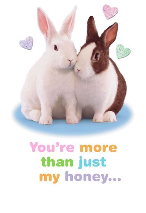Snuggle Bunny Romantic Easter Card   End of Life   Hallmark