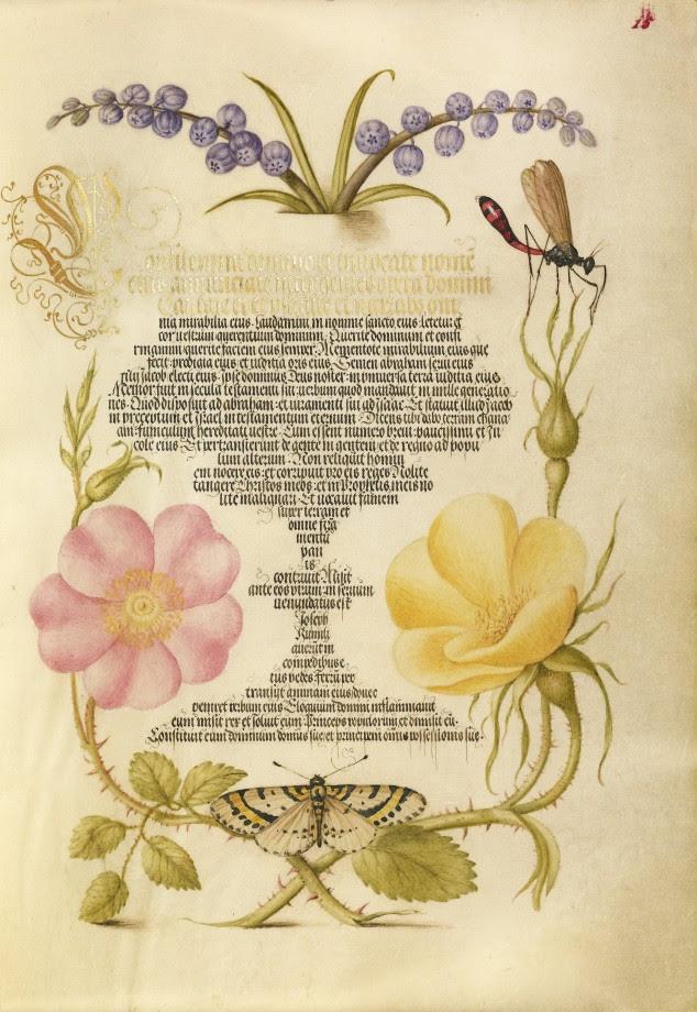 Mira-calligraphiae-monumenta-01