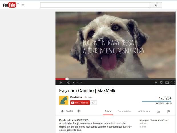 Cachorro (Foto: Reprodução/YouTube)