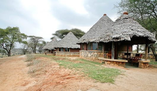Start Your Deluxe Stay At Tarangire Safari Lodge To Find The Safari Activity? - PEACEMAKERS EXPEDITION & SAFARI