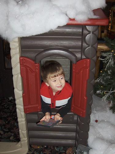 The Mini Lodge