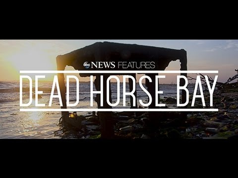 Dead Horse Bay Assemblage Playground