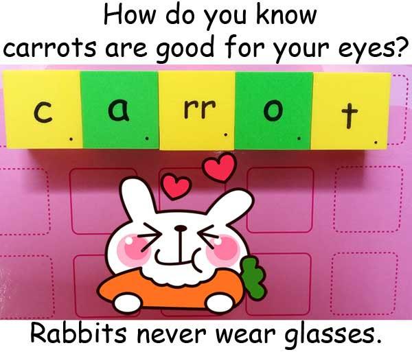 carrots 紅蘿蔔 胡蘿蔔 兔子 rabbits
