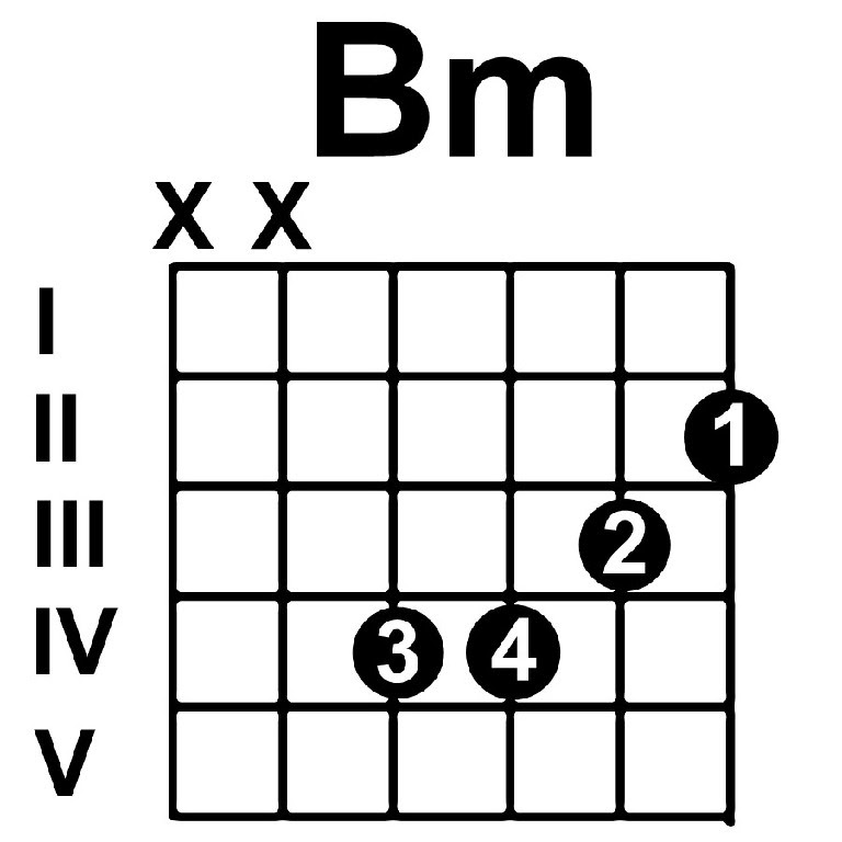 Attractive B Minor Chord Festooning - Beginner Guitar Piano Chords ...