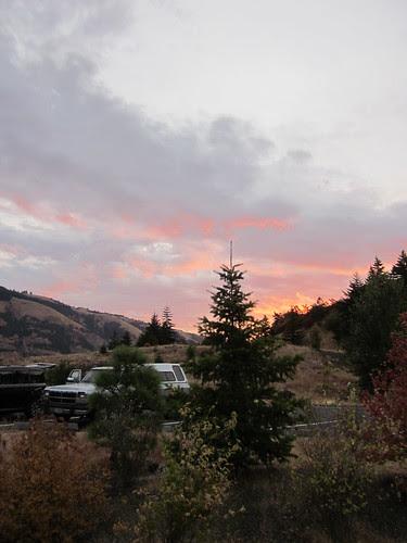 Pretty sunrise!