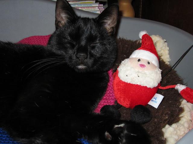 Thank you Santa (4)