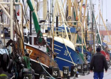 Los subsidios pesqueros para quienes los merecen