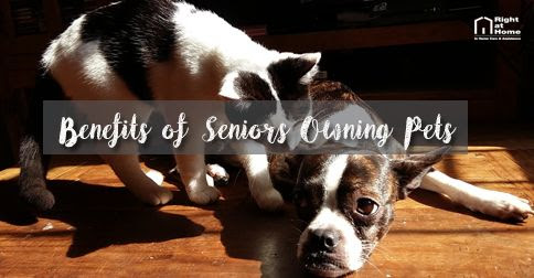 Benefits of Seniors Owning Pets | Right at Home | Blog