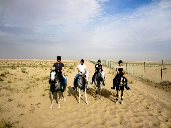 Al Jiyad Stables Dubai Location Map,Location Map of Al Jiyad Stables Dubai,Al Jiyad Stables Dubai accommodation destinations attractions hotels map reviews photos pictures
