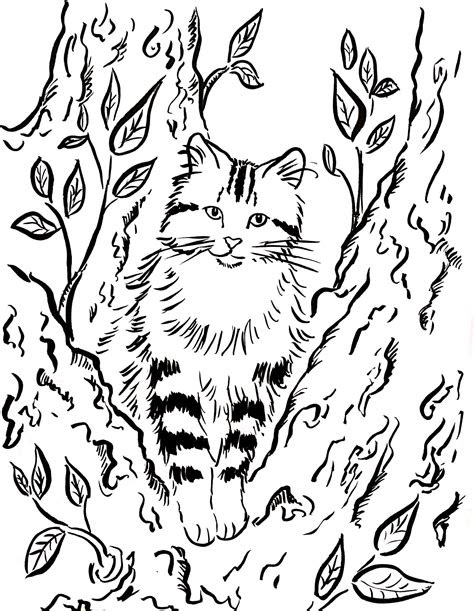cat   tree coloring page art starts  kids