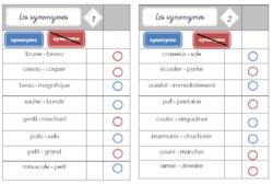 Cartes multi choix sur les synonymes