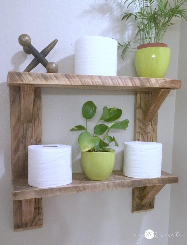 green plants on shelves