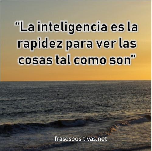 70 Frases De Inteligencia Sabiduria Y Conocimiento Imagenes