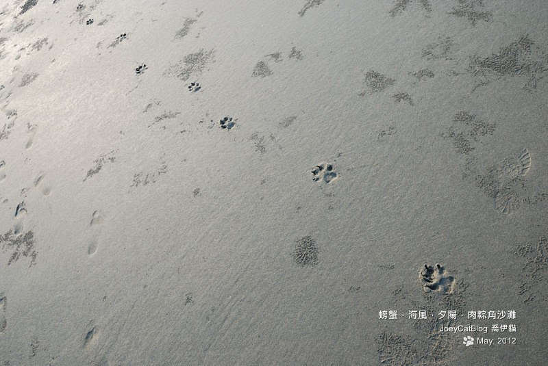 2012_0506_螃蟹,海風,夕陽,肉粽角沙灘DSC_4657
