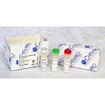 Chembio Diagnostic 60-9549-0, HIV 1/2 Rapid Test Control Kit, 1/EA (944103_EA)