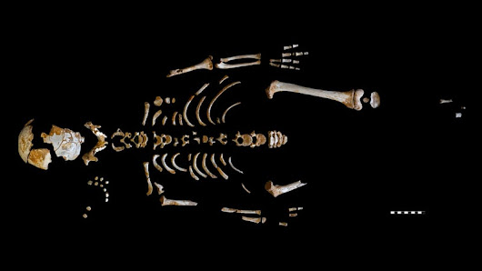 Exquisite Skeleton of a Neanderthal Kid Offers Clues to Human Evolution