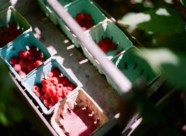 2012_0725_Raspberries03.jpg