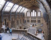 the main hall in the Natural History Museum with stairs