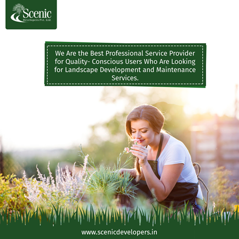 What to look for when you hire a professional landscaping company