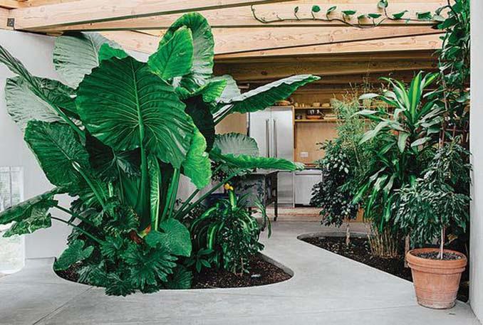 Εντυπωσιακά παραδείγματα μικρών εσωτερικών κήπων (9)
